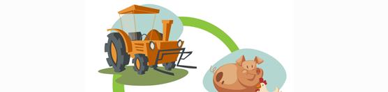 Novos apoios comunitários para a agricultura arrancam a 15 de Novembro